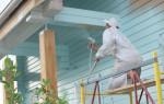 Покраска фасадов: особенности поверхности и применяемой краски